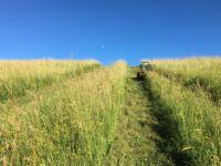 Fűnyíró traktor által nehezen nyírható terep